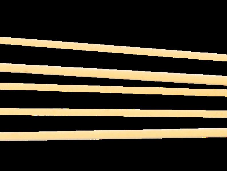Lo Spaghettone